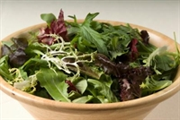 Antioksidan Kaynağı Koyu Yeşil Yapraklı Sebzeler