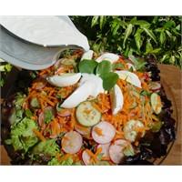Yer Lahanası Salatası - Yogurtkitabi.Com