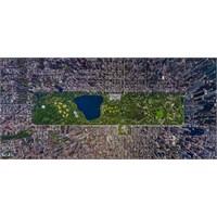 Dünyanın En Büyük Metropol Parkları