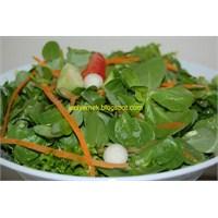 Rokalı Semizotu Salatası