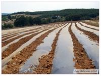 Organik Ürünler Yetiştirmeye Hazırlık