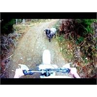 2013 'ün Popüler Motosiklet Videoları