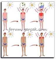Yaz Geldi - Nasıl Sağlıklı Bronzlaşabiliriz?