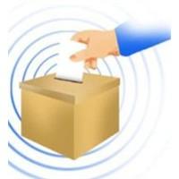 Fransızlar İnternetten Oy Kullanacak
