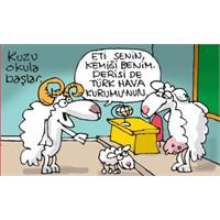 Türkiye Ziraat Odaları Birliği Kurbanlık Fiyatları