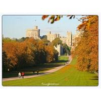 Windsor Sarayı | İngiltere