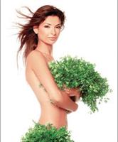 Menopoz İçin Bitkisel Çözümler