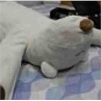 Horlamayı Durduran Robot Ayıcık: Jukusui-kun