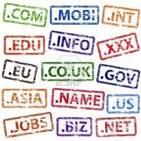 Domain Çeşitleri Nelerdir ?