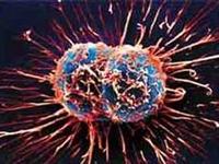 Türkiye Kanser Tedavisinde Üs Oluyor