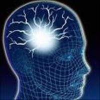İnsan Beyni Ve Tanrı