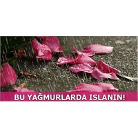 Bu Yağmurlar Şifa Getiriyor, Islanın!