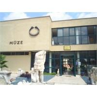 Türkiyede İlk Müze Çalışmalarını Kim Başlatmıştır