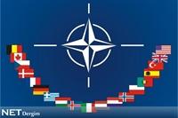 Nato'dan Rusyaya Zeytin Dalı