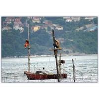 Dalyan Direğindeki Balıkçı | Beykoz Dalyanı