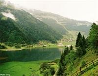 Yurt İçi Tatil Yerleri - Uzungöl Yaylası