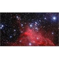 Genç Yıldızların Büyüleyici Görüntüsü