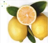 Limon Yağı Cilt İçin Çok Faydalıdır.