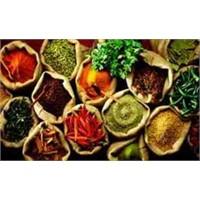 Bitkilerle Detoks