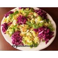 Şifa Salatası