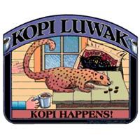Dünyanın En Pahalı Kahvesi... 'Kopi Luwak'