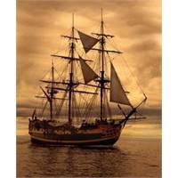 Lafla Peynir Gemisi Yürümez'in Hikayesi