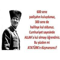 Bu Yüzden Mi Atatürk'e Düşmansınız?