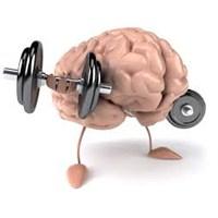 Hafızanızı Güçlendirmek İçin Sekiz Adım