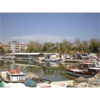 Selimpaşa