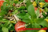Hamsili Sosyete Salatası
