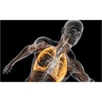 Akciğerde Baloncuk Patlamasını Duymuş Muydunuz?