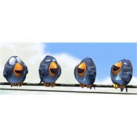 Günün Kısa Filmi : For The Birds