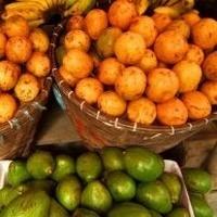Egzotik Meyveler!