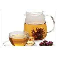 Bitki Çayları Şifa Kaynağı
