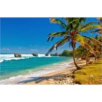 Ebedi Cennet, Barbados