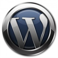 Wordpress Tarih Formatı