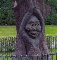 Masal  Ağacı...