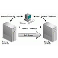 Oracle Database 12c Kurulumu