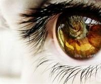 En Güzel Gözlüler Kuzeyliler