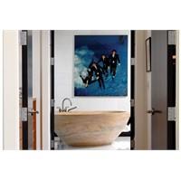 Banyo Dekorasyon Fikir Ve Önerileri