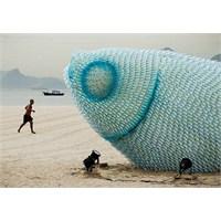Sahildeki Dev Plastik Balık Heykelleri