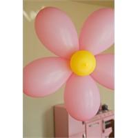 Çiçek Balon Yapımı
