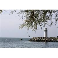 Deniz Fenerini Temizleyelim!