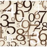 Sayıların Gizemi