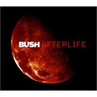 "Yeni Video: Bush ""The Afterlife"""