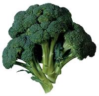 Kadınlarda Kemik Erimesine İyi Gelen Bitki Brokoli