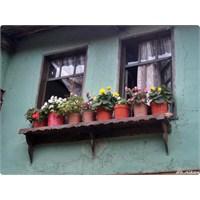 Yaşanmışlıklar, Kapı Ve Pencereler..