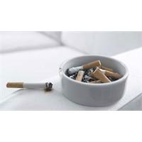 Mesane Kanserine Sigaranın Etkisi