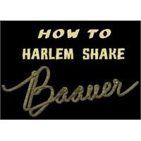 Yeni Moda Harlem Shake