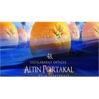 Altın Portakal İçin Yarışacak Filmler